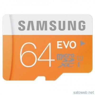 64GB_SD_ZVFtd5MIL._SL1003_